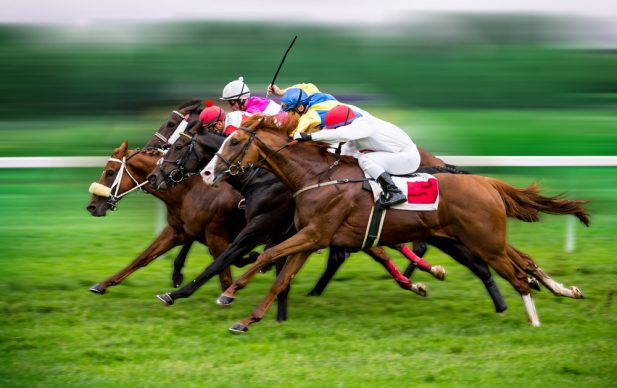 Horse Racing Background Image