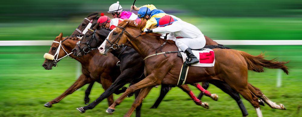 Horse Racing Background Image